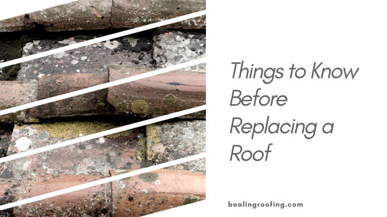 Things to Know Before Replacing a Roof