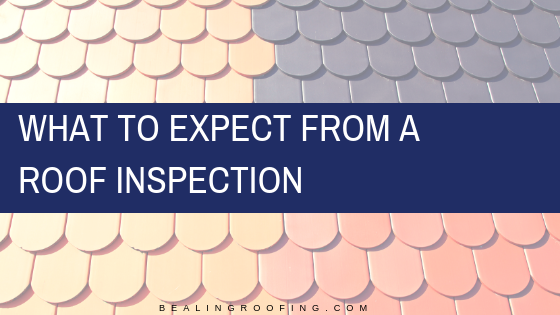 What to Expect from a Roof Inspection