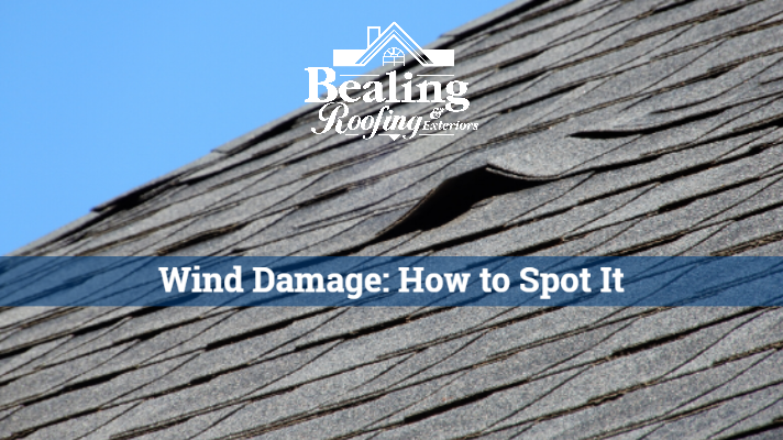 Wind Damage: How to Spot it