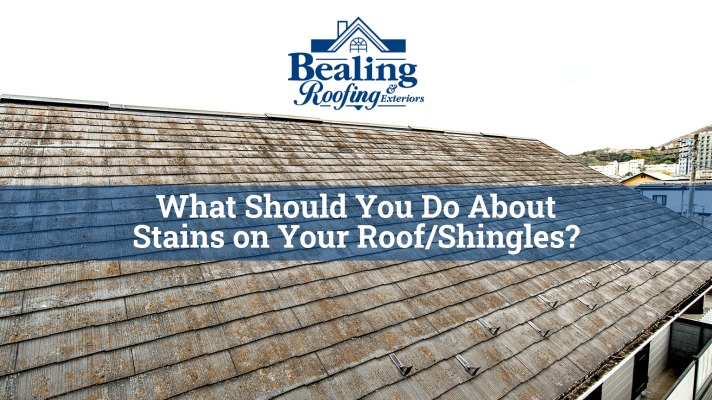 What Should You Do About Stains on Your Roof/Shingles?
