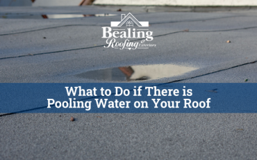 What to do if there is pooling water on your roof